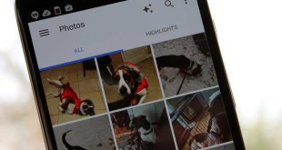 Google Fotos permite crear álbumes compartidos