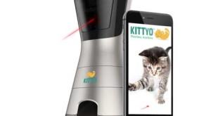 ¿Qué es Kittyo?